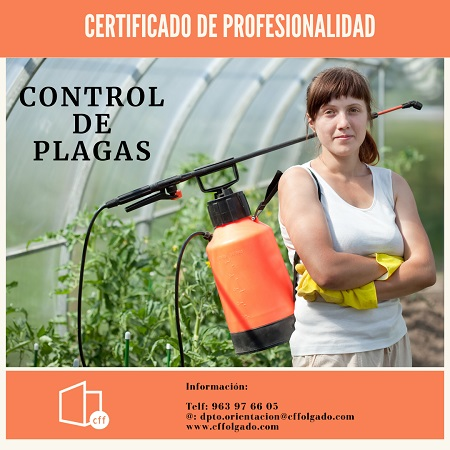 CONTROL DE PLAGAS PARA WEB_noticias